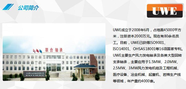 大连联合风电轴承有限公司-